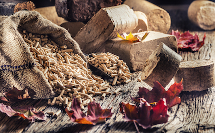 Wooden,Pressed,Pellets,And,Briquettes,From,Biomass,With,Autumn,Leaves.